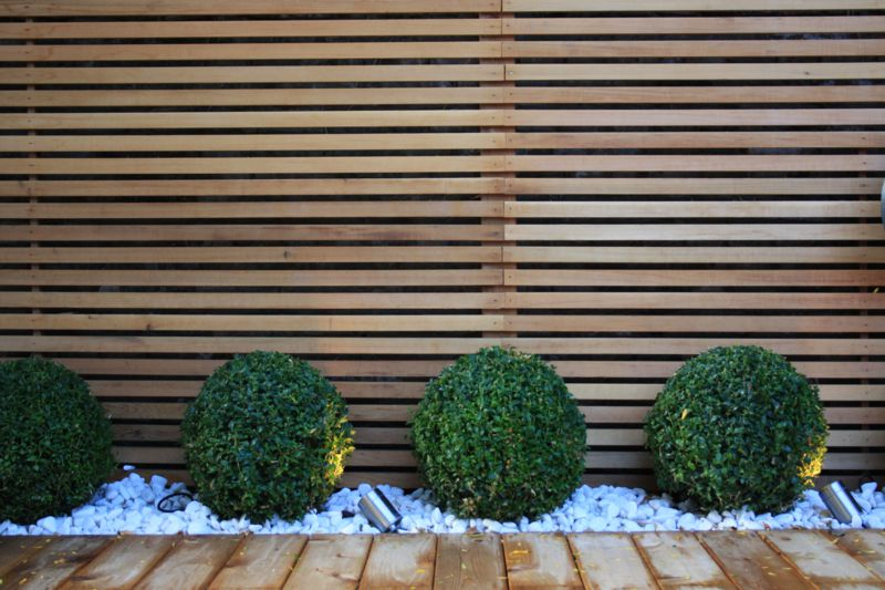 Contemporary garden design in london garden club london for Palissade bois exterieur