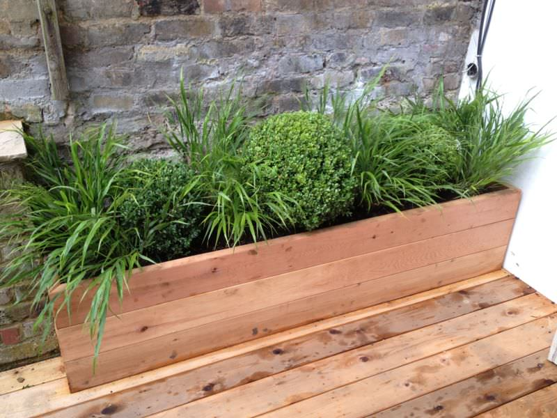 Planting pots and containers installation service in London