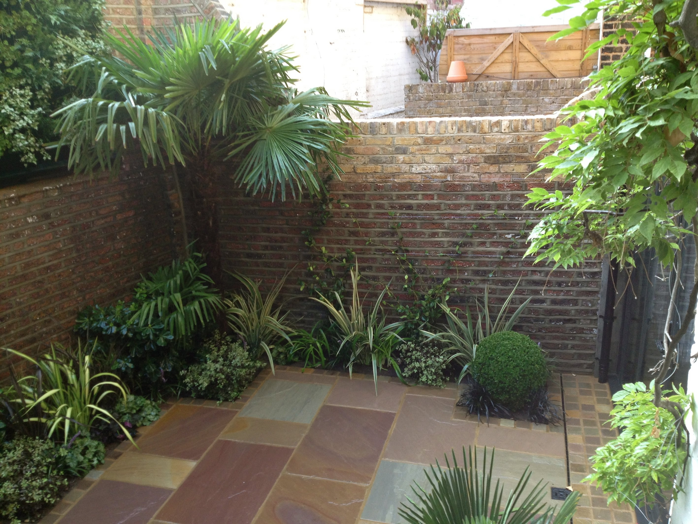Low maintenance garden designs garden club london for Paved courtyard garden ideas