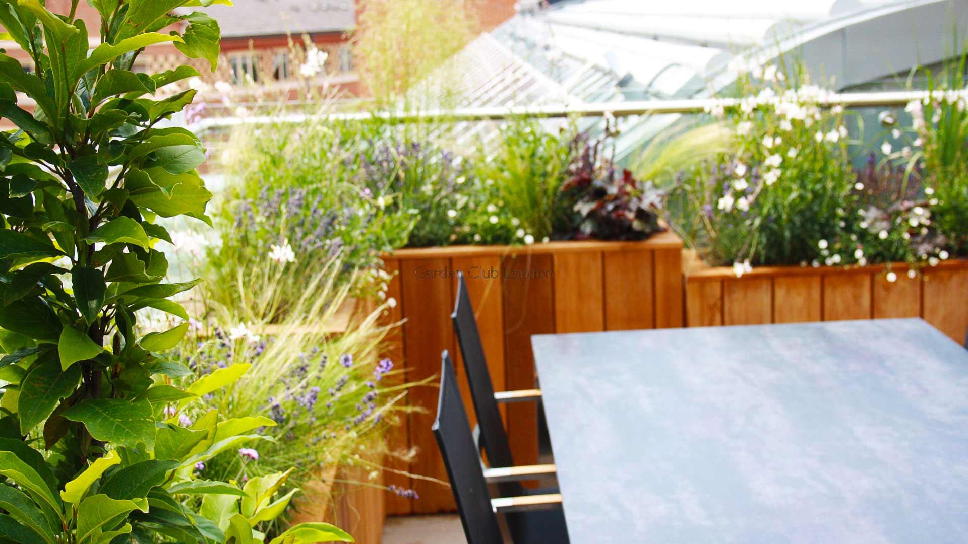 urban garden roof design garden club london. Black Bedroom Furniture Sets. Home Design Ideas