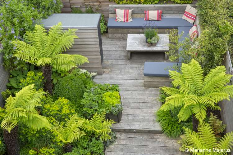 Urban london garden design garden club london for Garden design examples