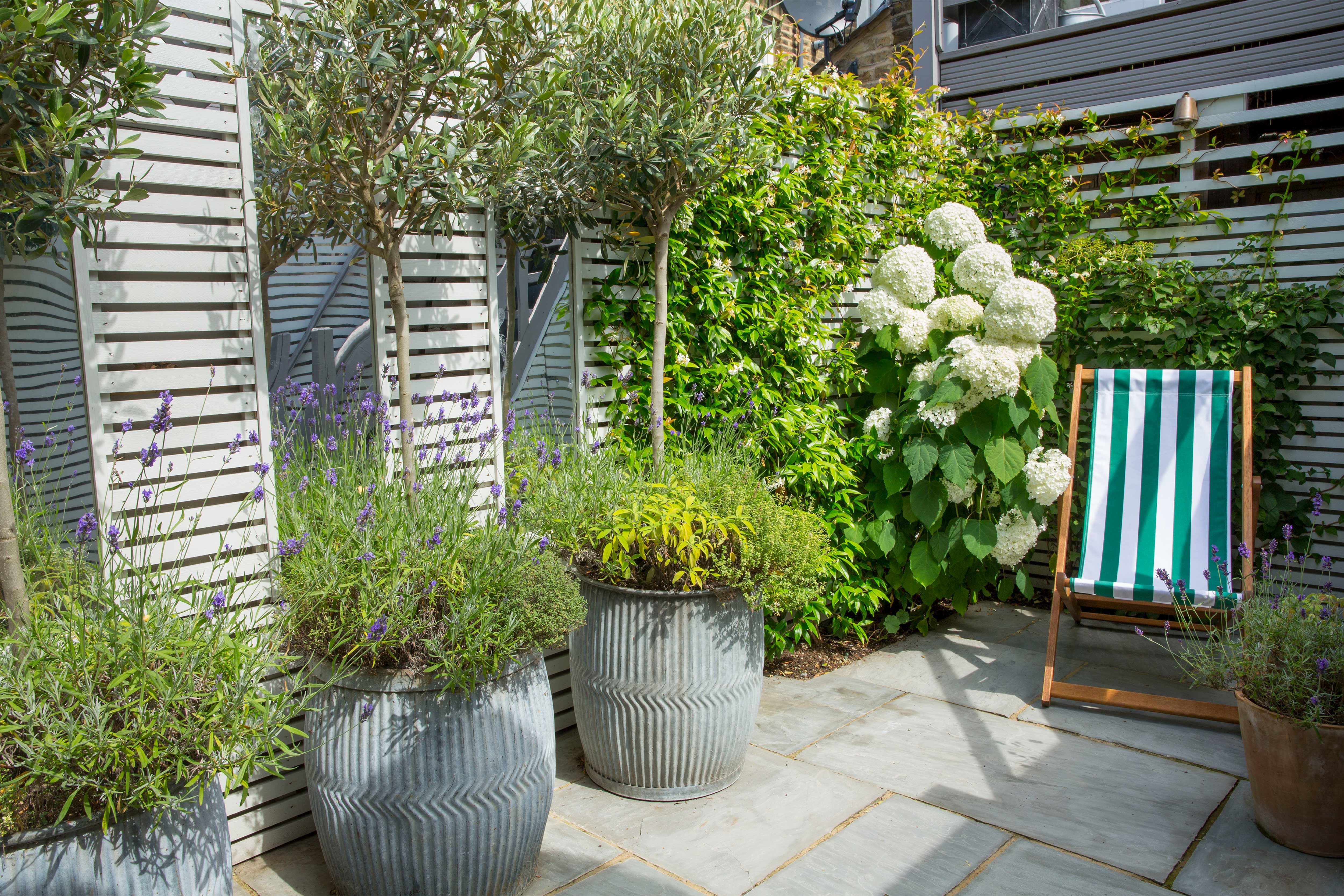 Fulham Garden Design - Garden Club London
