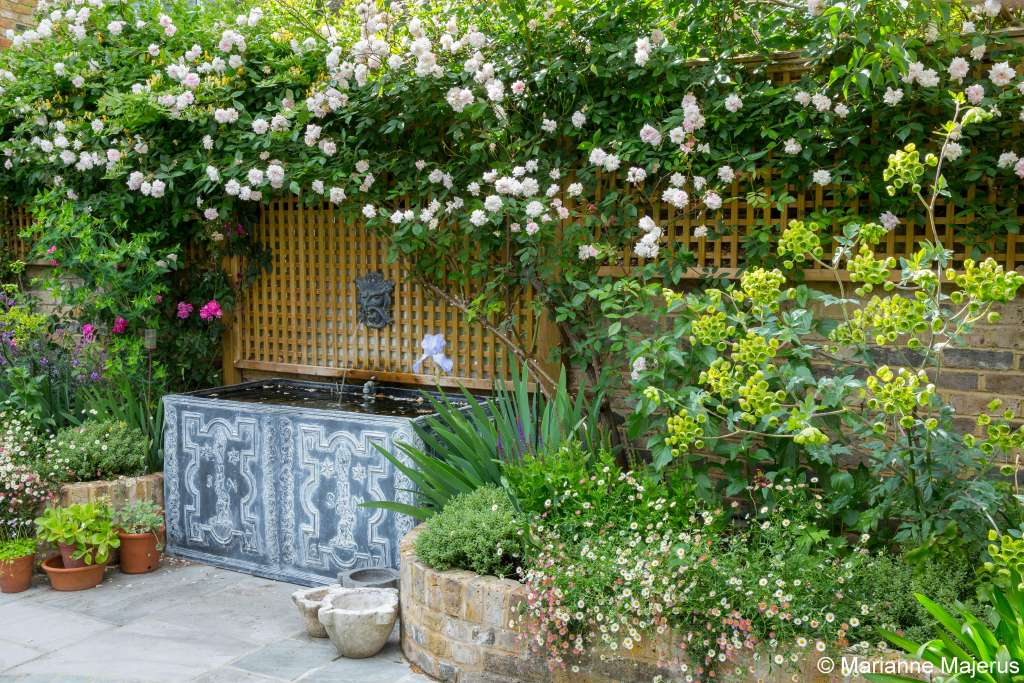 Putney Garden Design Garden Club London